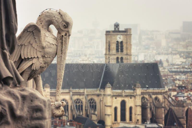 从巴黎圣母院塔的看法  库存图片
