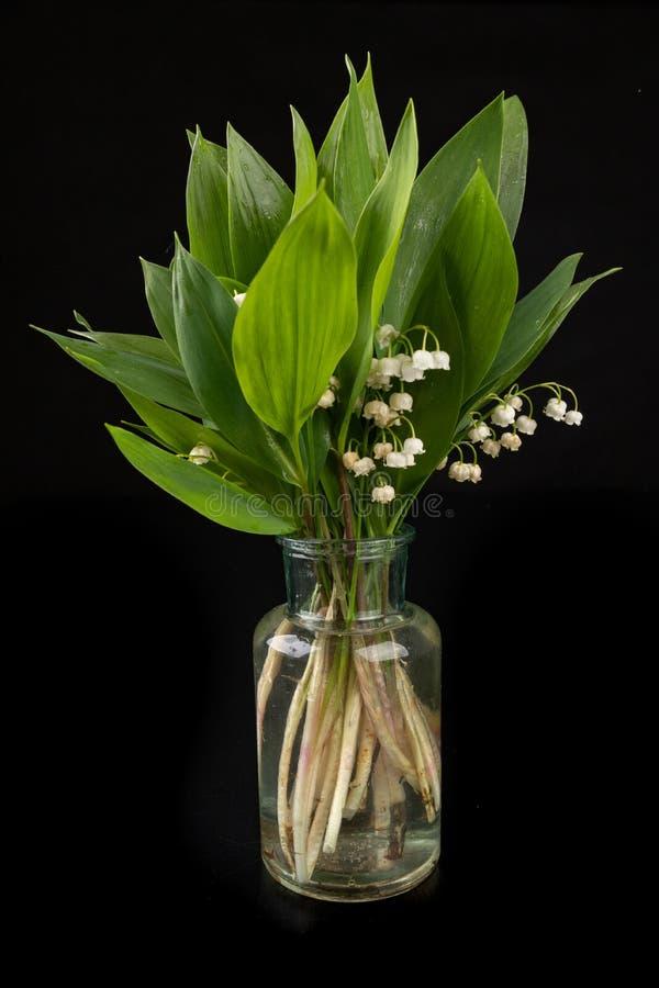 从庭院打破的湿百合 在一个玻璃花瓶的美丽的花 免版税图库摄影