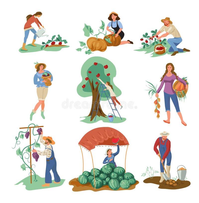 从庭院收集自然eco食物的设置人 向量例证