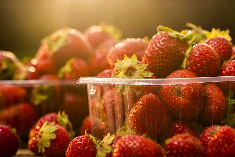从庭院的新鲜的草莓塑料盒的 库存照片