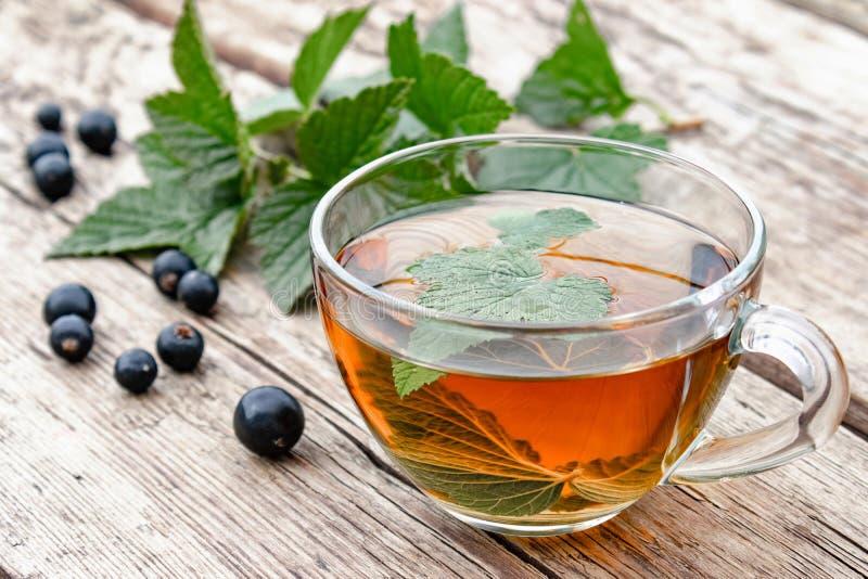 从无核小葡萄干叶子的清凉茶在一张木桌上的一个玻璃透明杯子在绿色叶子和无核小葡萄干莓果附近 库存图片