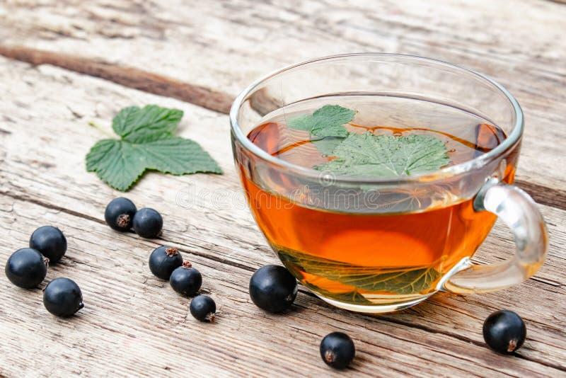 从无核小葡萄干叶子的清凉茶在一张木桌上的一个玻璃透明杯子在绿色叶子和无核小葡萄干莓果附近 免版税库存照片