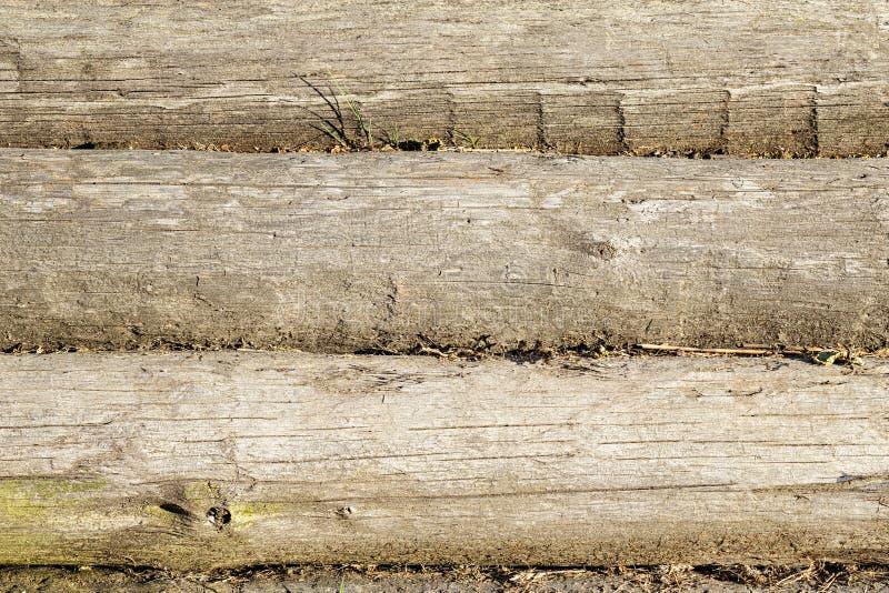 从日志的老木墙壁当背景纹理 免版税库存图片