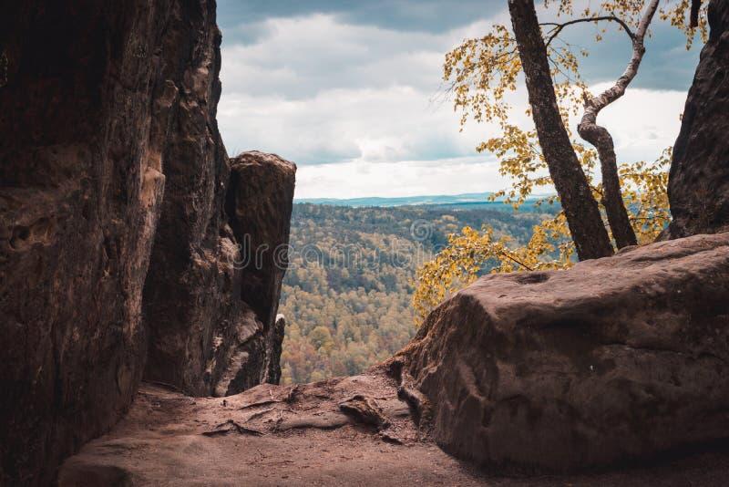从易北河砂岩山脉,萨克森瑞士国家公园,德国的看法 大石头和绿色树 免版税库存照片