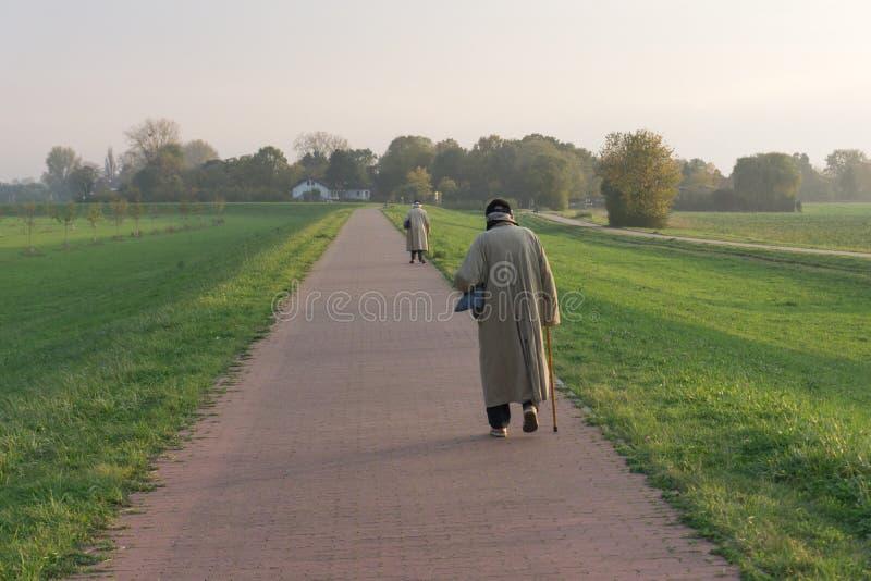 从晚上步行的两个老年人回归 图库摄影