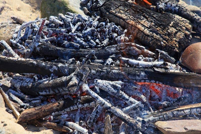 从木分支的炽热闷燃的篝火 免版税图库摄影
