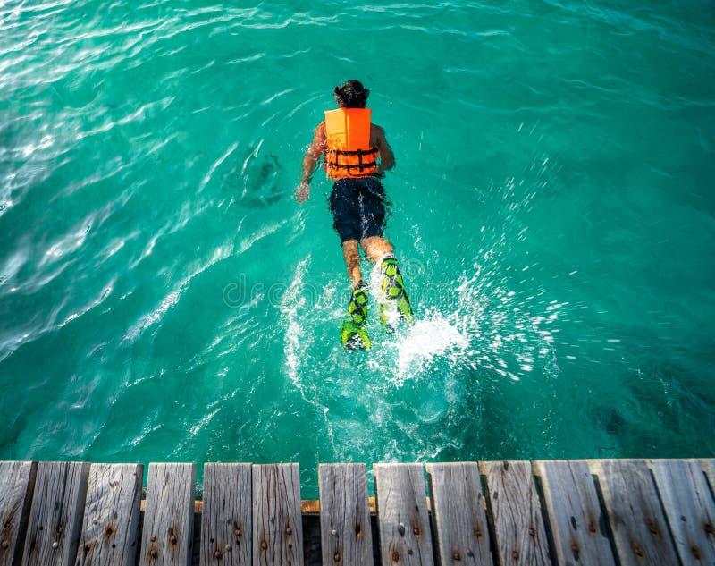 从木桥的一个海湾跃迁向游泳的海 库存图片