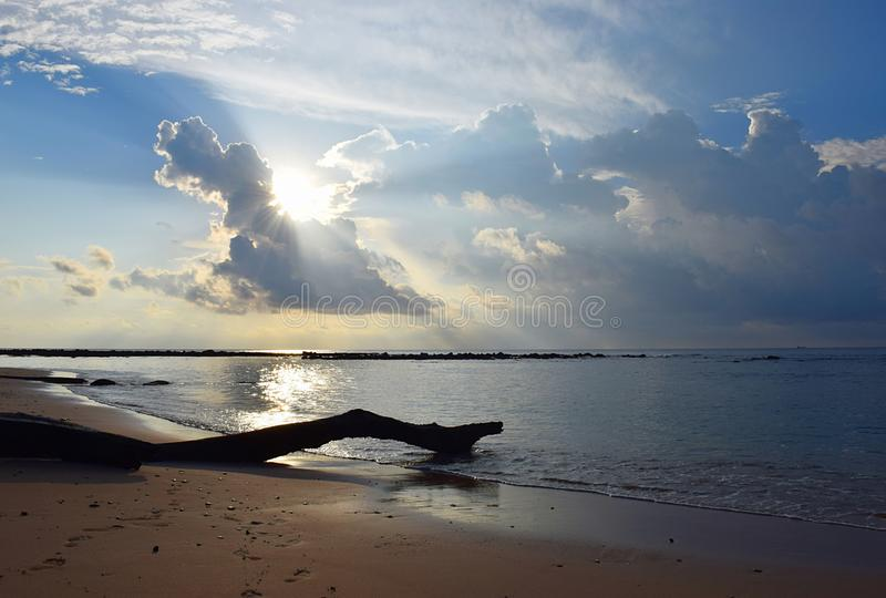 从来通过在晴朗的天空的云彩的金黄太阳的明亮的阳光在海水和木日志 免版税库存图片