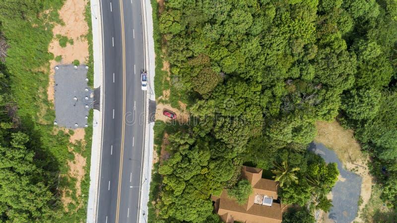 从柏油路寄生虫顶视图的鸟瞰图有绿色森林的 免版税库存照片