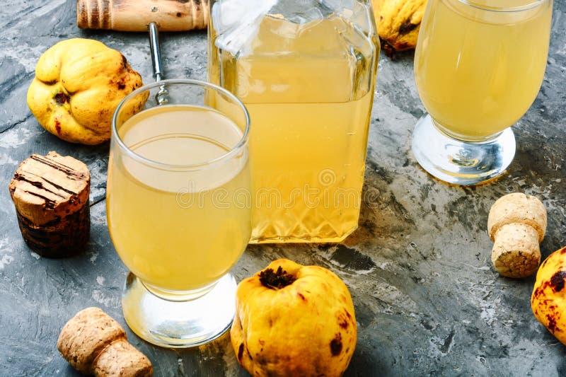 从柑橘的酒 免版税库存照片