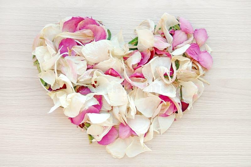 从桃红色和白色玫瑰和兰花瓣的轻的心形在木背景 爱和浪漫史概念 库存图片