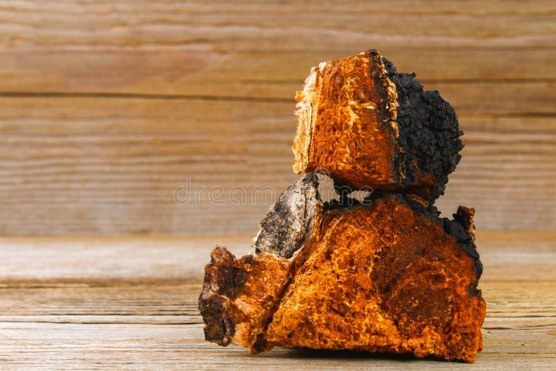 从桦树蘑菇chaga的医治用的茶用于民间医学 免版税图库摄影