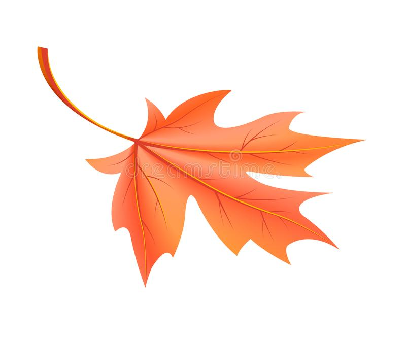 从槭树传染媒介下落的红色秋天叶子 向量例证