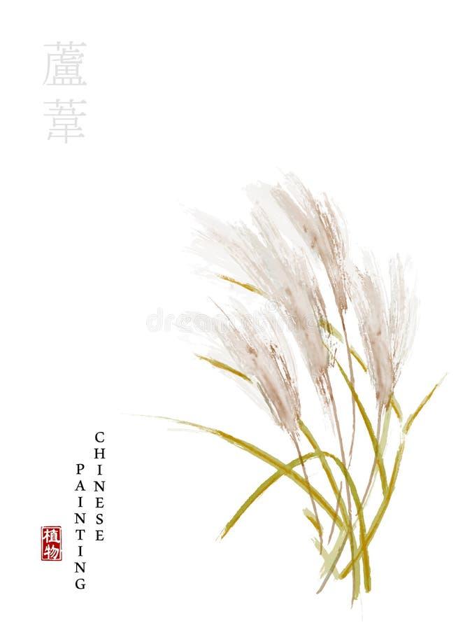 从歌曲书的水彩中国墨水油漆艺术例证自然植物用茅草盖 中国词的翻译:植物 皇族释放例证