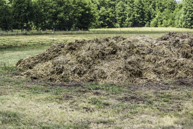 从母牛肥料和秸杆的肥料 免版税库存图片