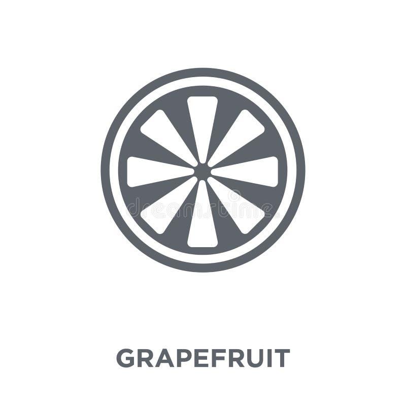 从水果和蔬菜汇集的葡萄柚象 库存例证