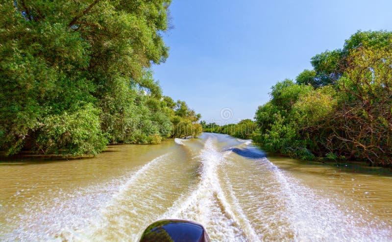 从汽艇的看法向美好的自然和河 免版税图库摄影