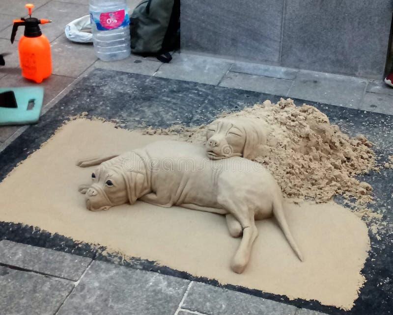 从沙子的狗 库存照片