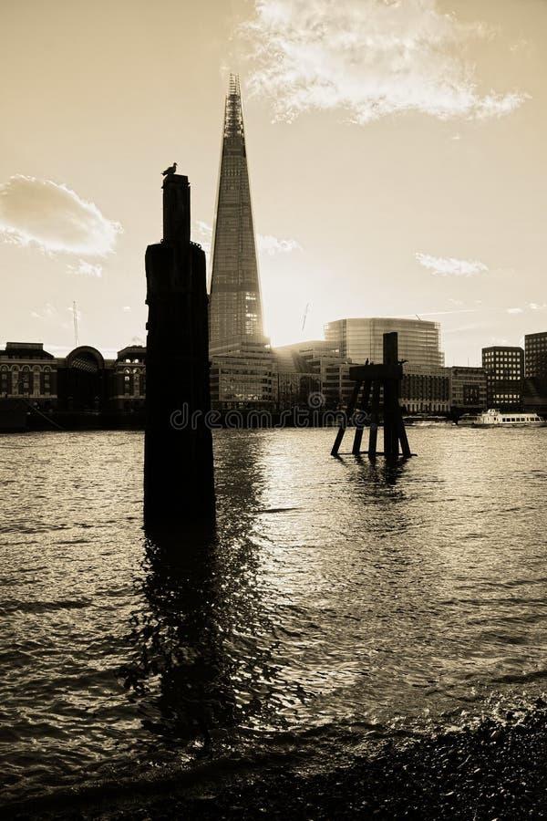 从泰晤士河岸的碎片  图库摄影