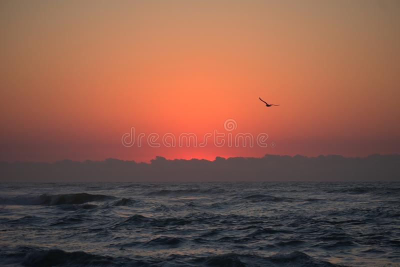 从清早海滩步行的巨大看法:头脑刷新 库存照片