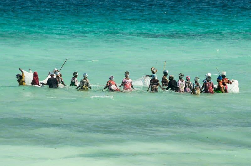 从渔村的非洲妇女抓小鱼在离海洋的海岸的附近 免版税库存图片