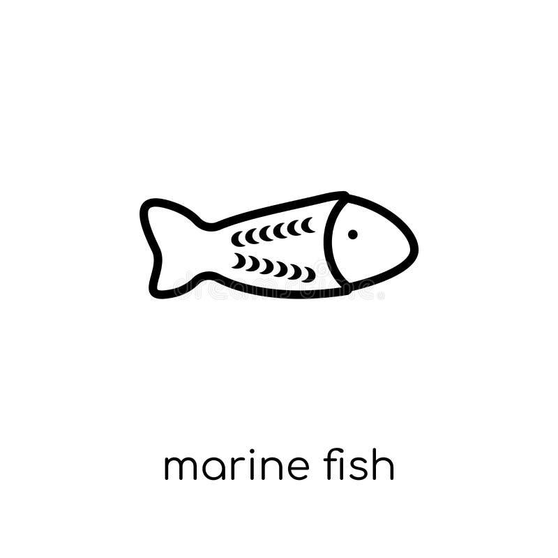 从澳大利亚汇集的海鱼象 向量例证