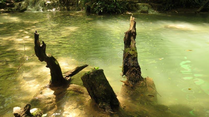 从瀑布小瀑布Krushuna保加利亚的部分在夏天 免版税库存照片