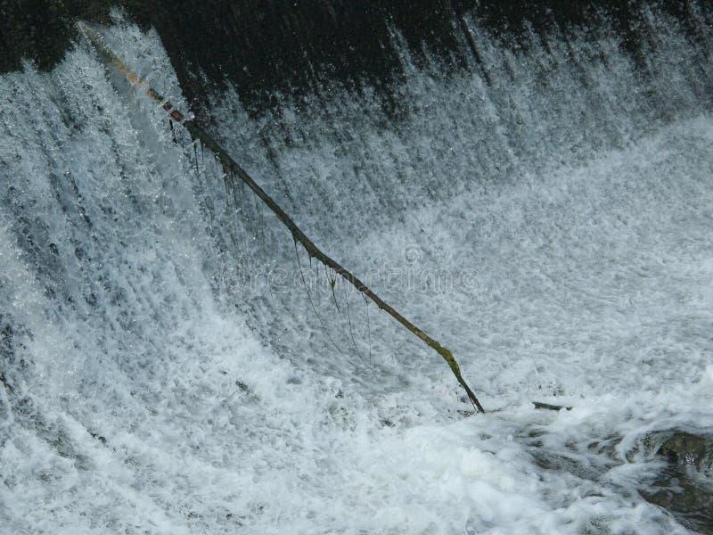 从瀑布的基地出来的孤立棍子 库存照片