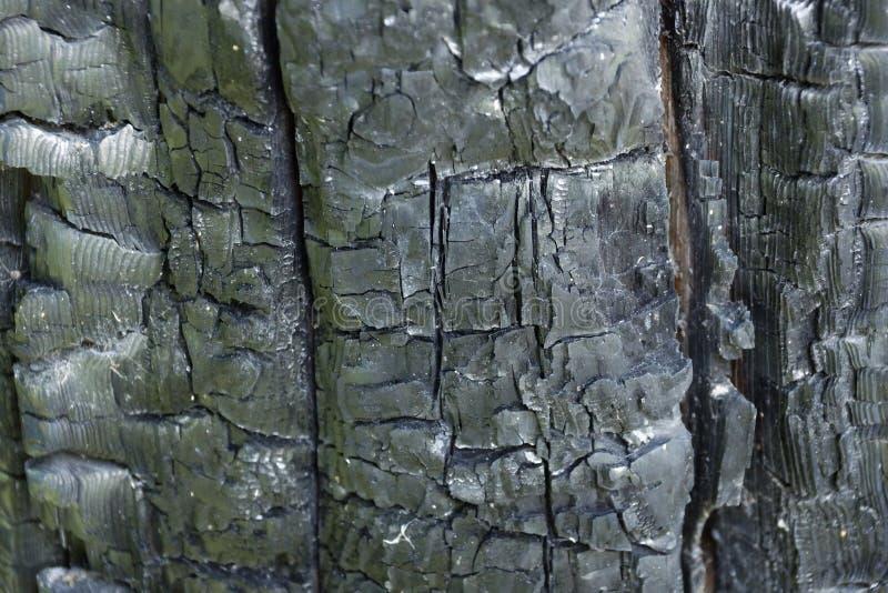从火纹理背景的被烧焦的木头 图库摄影