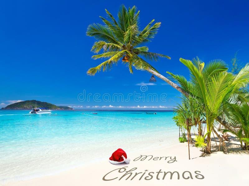从热带海滩的圣诞快乐愿望 免版税库存图片