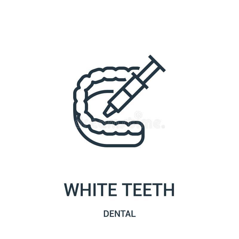 从牙齿收藏的白色牙象传染媒介 稀薄的线白色牙概述象传染媒介例证 r 向量例证
