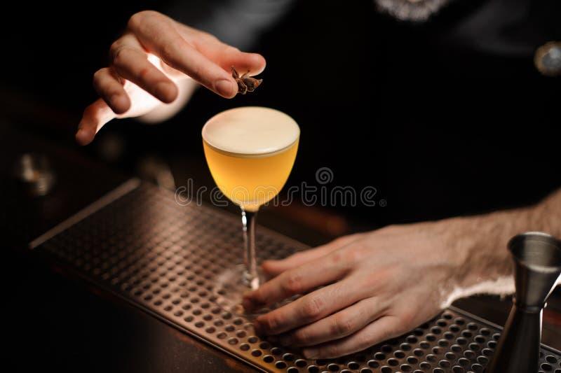 从男性侍酒者上的看法说到这一个茴香星的鸡尾酒装饰 免版税库存照片