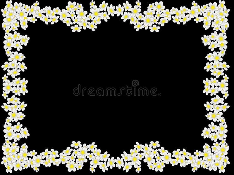 从白花的框架 图库摄影