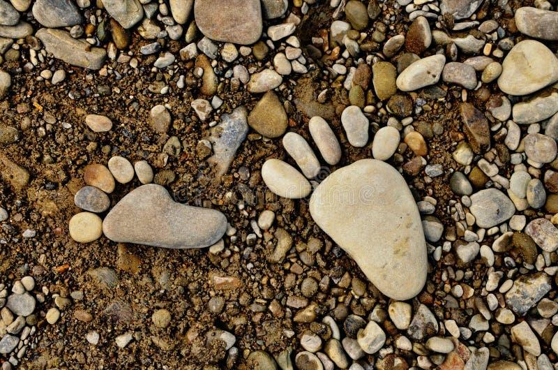 从石头的大腿 免版税库存图片