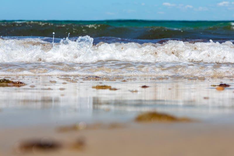 从碰撞沿海滩的波浪的海泡沫 免版税库存照片