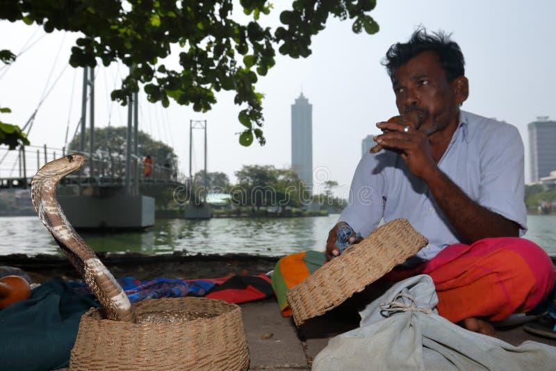 从科伦坡的耍蛇者在斯里兰卡 免版税库存照片