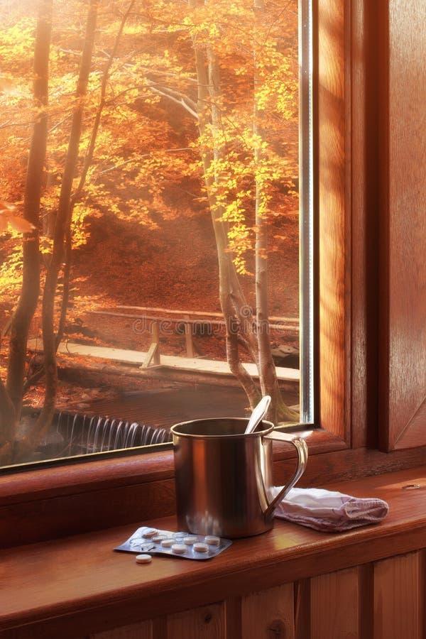 从窗口的秋天舒适视图 使用药片、在窗台的杯子温暖的饮料和手帕 免版税库存图片