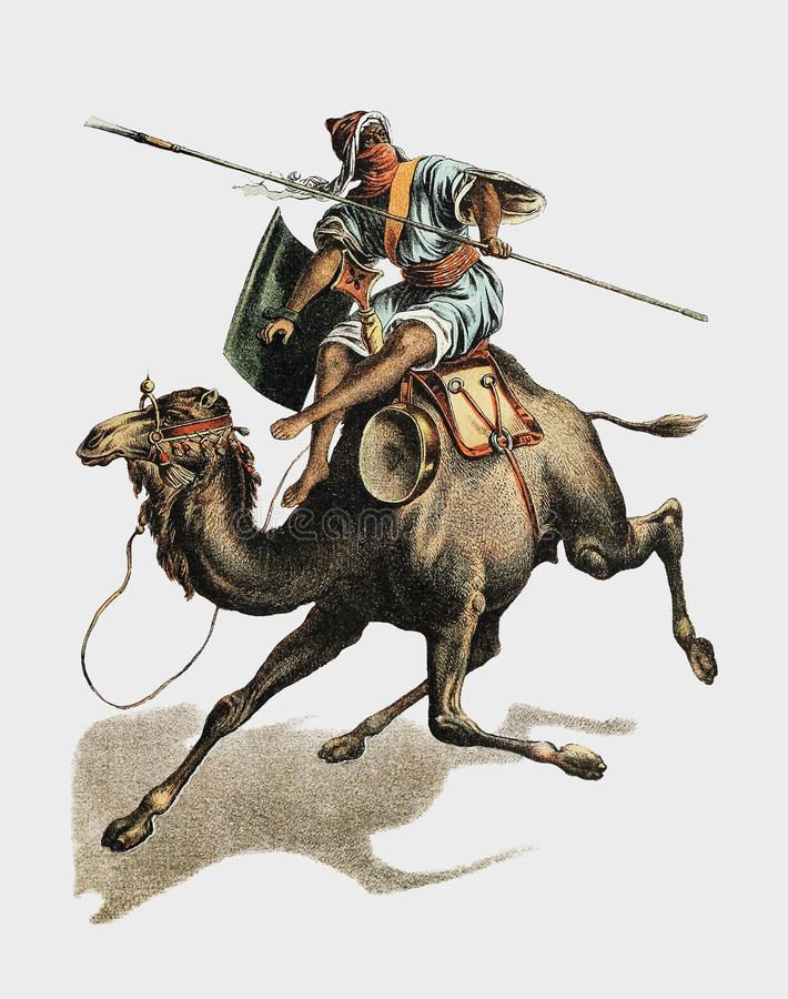 从约翰逊` s自然家庭书的骆驼由约翰石灰岩地区常见的地形的1880 1836-1922 rawpixel提高的数字式 向量例证