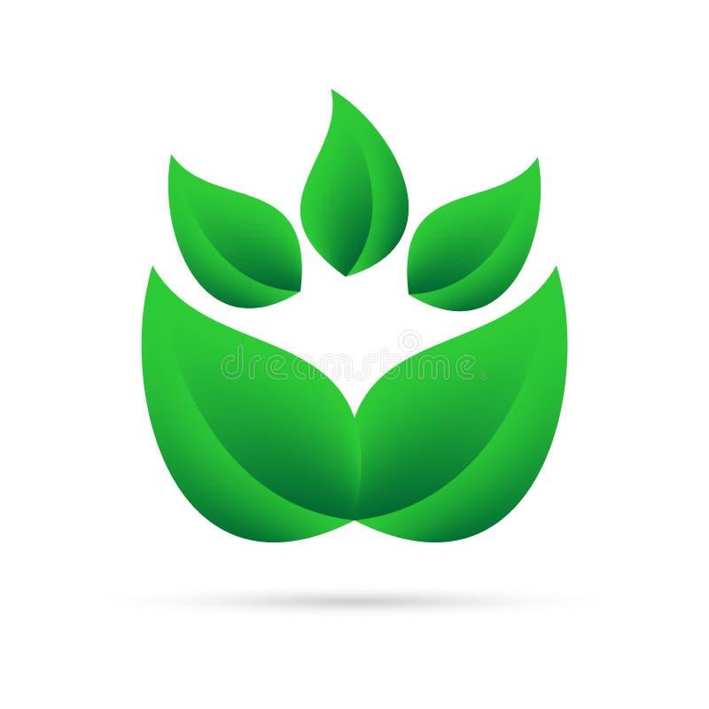从绿色的Eco象在我自己上离开在白色背景与灰色阴影在底部 抽象设计自然植物 库存例证