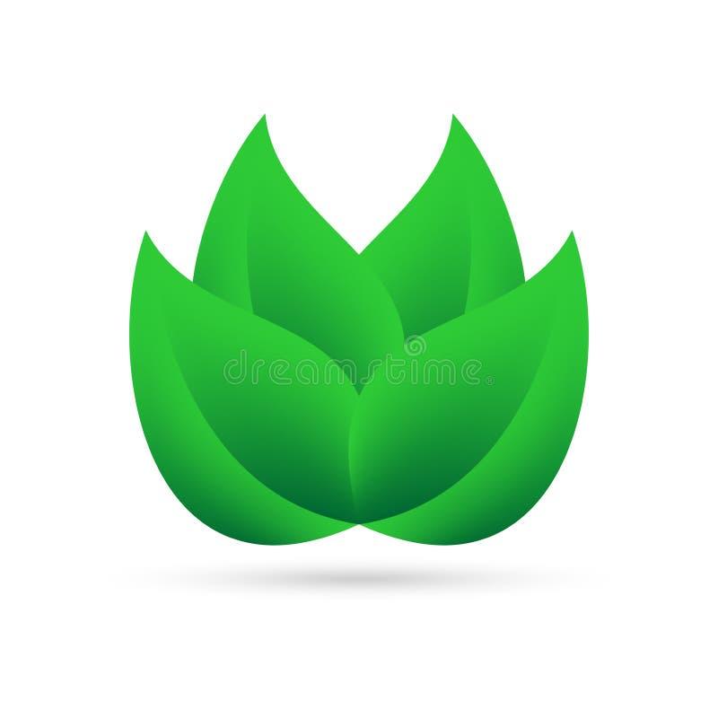 从绿色的Eco象在我自己上离开在白色背景与灰色阴影在底部 抽象设计自然植物 皇族释放例证