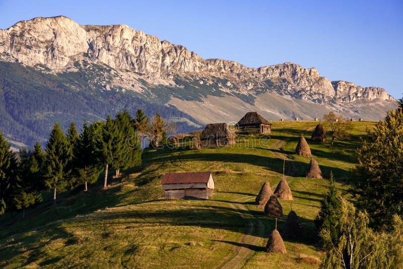 从罗马尼亚的风景有干草堆和老木房子的特兰西瓦尼亚山的  免版税库存图片