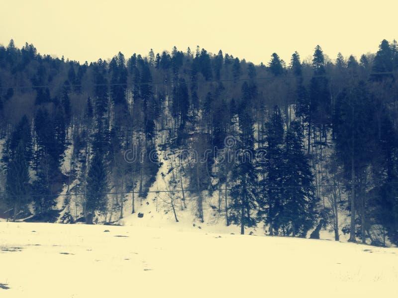 从罗马尼亚的Gura Diham 免版税库存照片