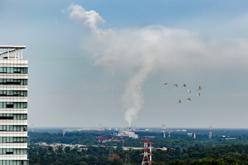 从能源厂` s管子的烟在天空上升反对绿色密林森林背景  库存图片