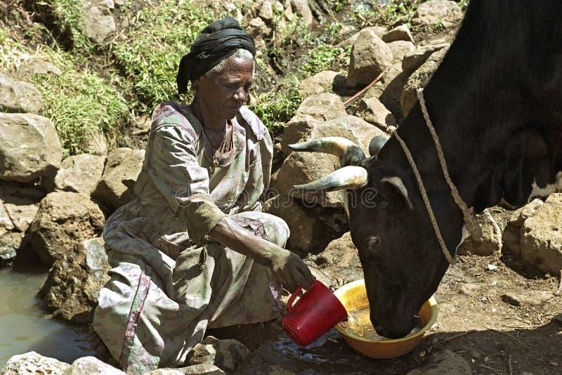 从自然井的埃赛俄比亚的妇女取指令水 库存图片
