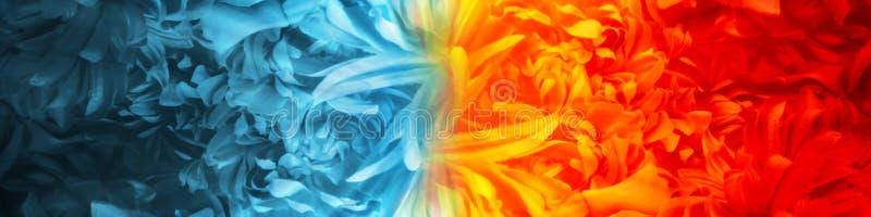 从花瓣创造的抽象火和冰元素使用颜色题材反对对彼此背景 库存例证