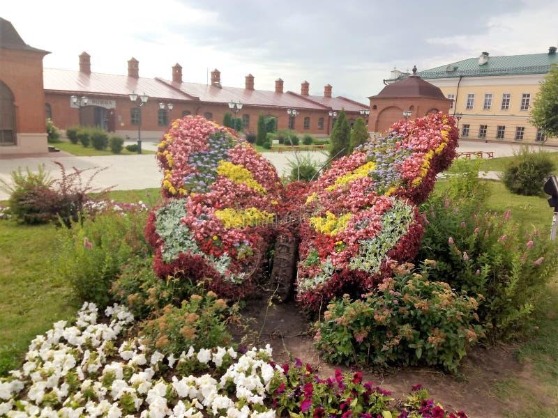 从花的蝴蝶 免版税库存照片