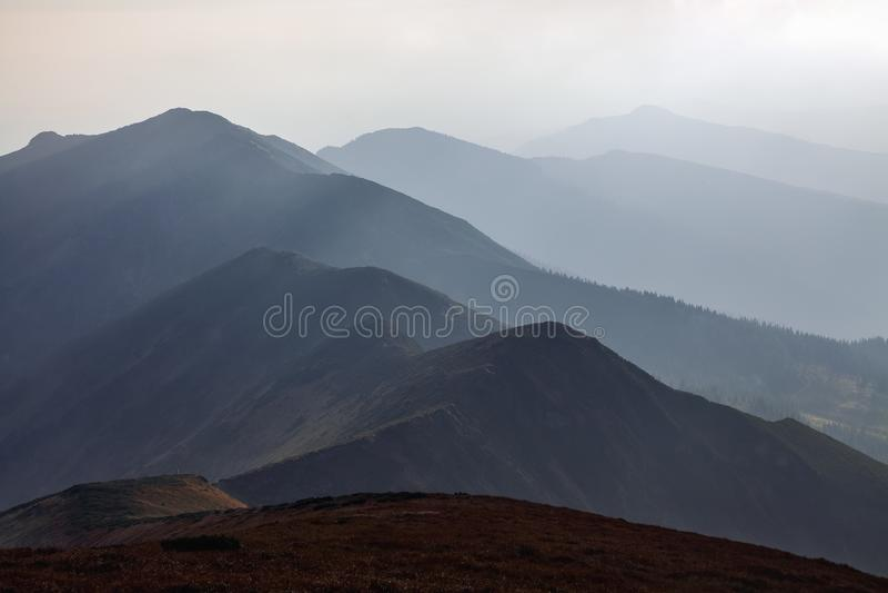 从草甸打开山的一幅全景 意想不到的春天风景 喀尔巴阡山脉旅游的手段,乌克兰,欧洲 库存图片