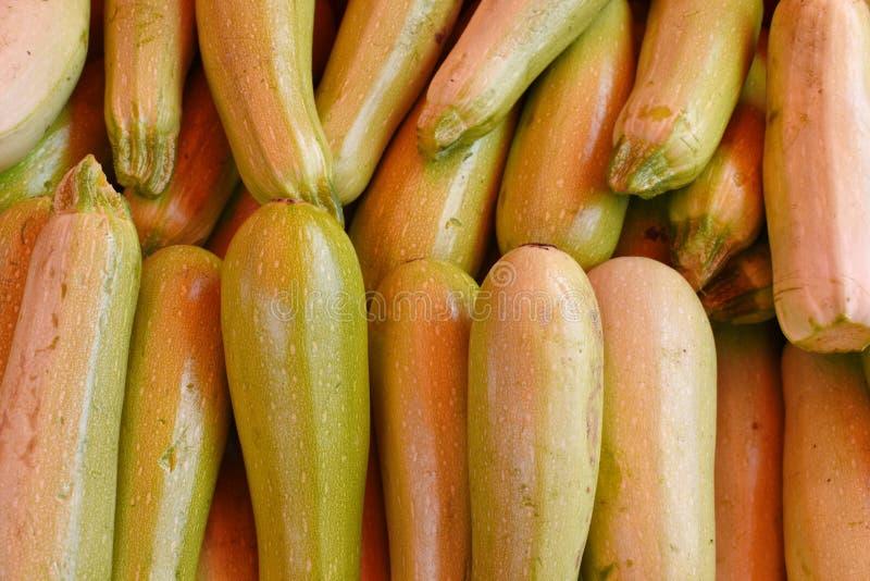 从菜的无缝的背景 绿色新鲜的夏南瓜在市场上 免版税库存照片