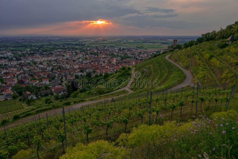 从葡萄园小山的空中全景在山路Bergstrasse的谷德国镇施里斯海姆的屋顶 免版税库存照片