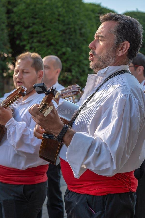 从葡萄牙的歌手传统服装的 免版税库存图片